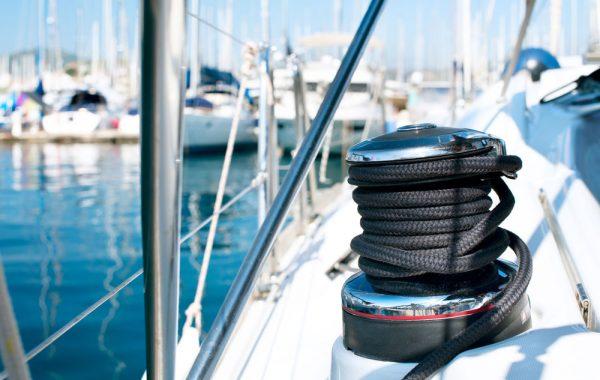 Salem Ahmad Almoosa Enterprises Sealion-Marine-600x380 Sea Lions Marine
